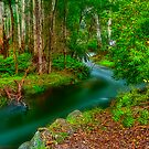 Maroondah Reservoir Spillway by Jason Green