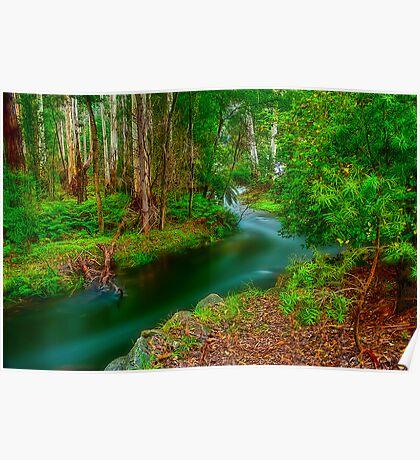 Maroondah Reservoir Spillway Poster
