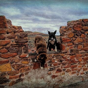 Working Dogs by DVJPhotography