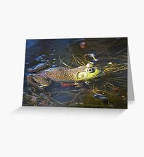 FROG IN POND Greeting Card