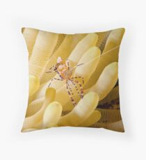 Anenome Shrimp Throw Pillow