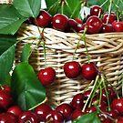 Cherry  by Nikki Collier