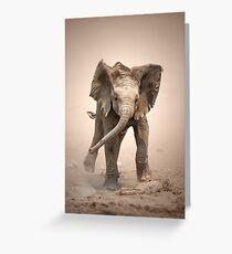 Elephant Calf mock charging Greeting Card