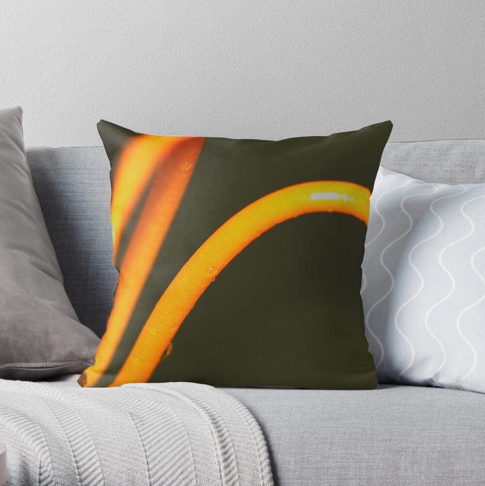 Styles Throw Pillow
