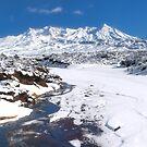 Mount Ruapehu, Tongariro national park by Paul Mercer