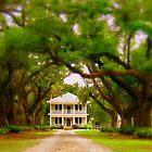 Path to Plantation  by Doug Bonner