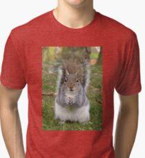 Poser Tri-blend T-Shirt