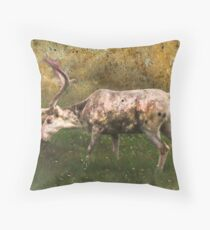 A Reindeer Named Bimbo Throw Pillow