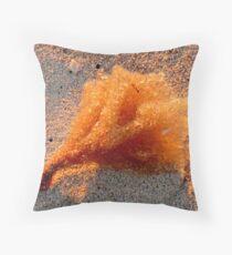 Sunset Sponge Throw Pillow