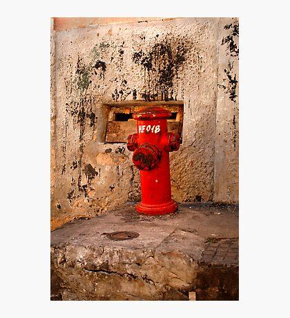 Salvador, Brasil 7319 Photographic Print