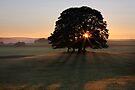 Airton Daybreak by SteveMG