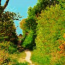 Hill Barn Lane by duncandragon