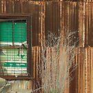 Derelict Factory by Peter Rowley