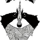 «Mapache blanco y negro» de artetbe