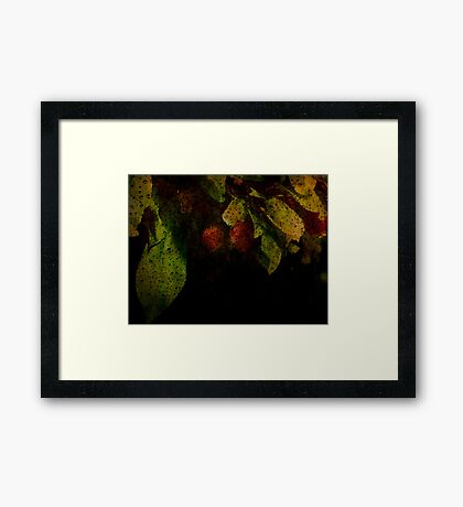 Amidst it all Framed Print