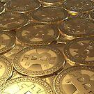 Gold coins bitcoin by VallaV