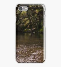 Turon River 2 iPhone Case/Skin