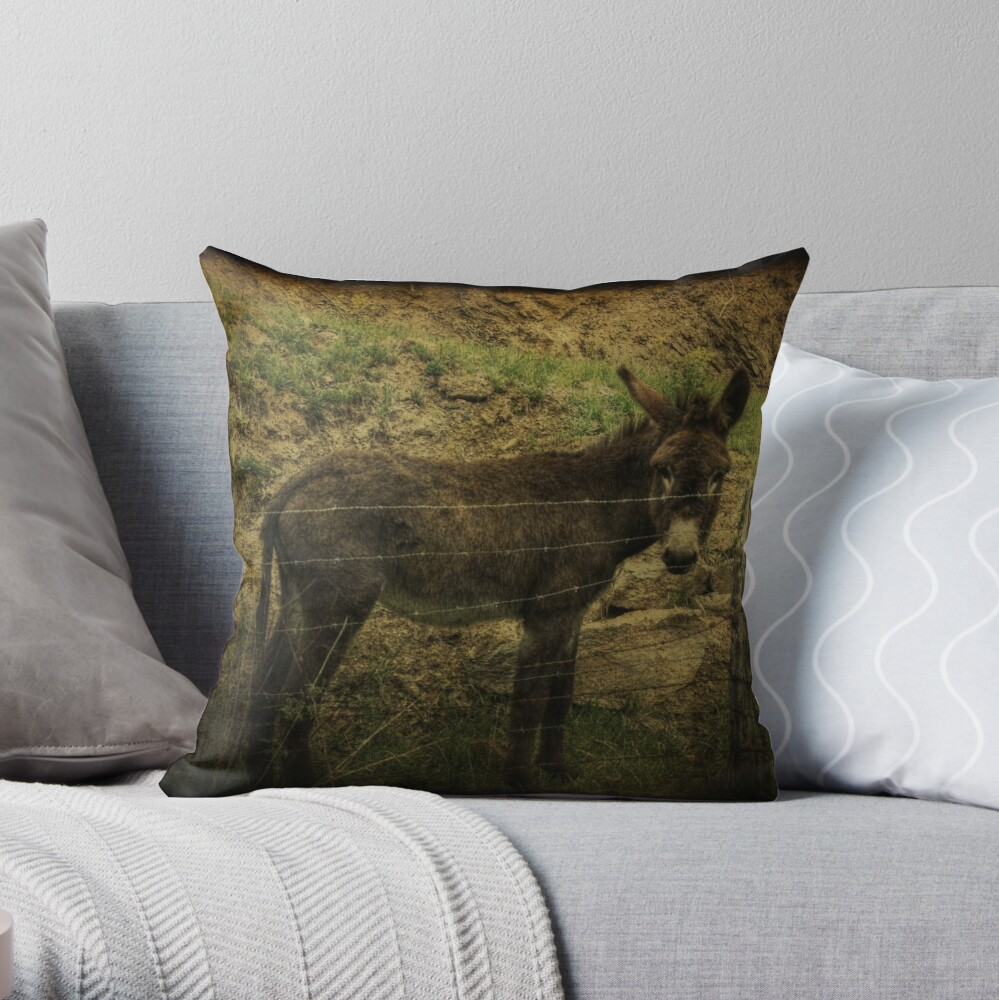 If Not For the Barbed Wire Fence Throw Pillow