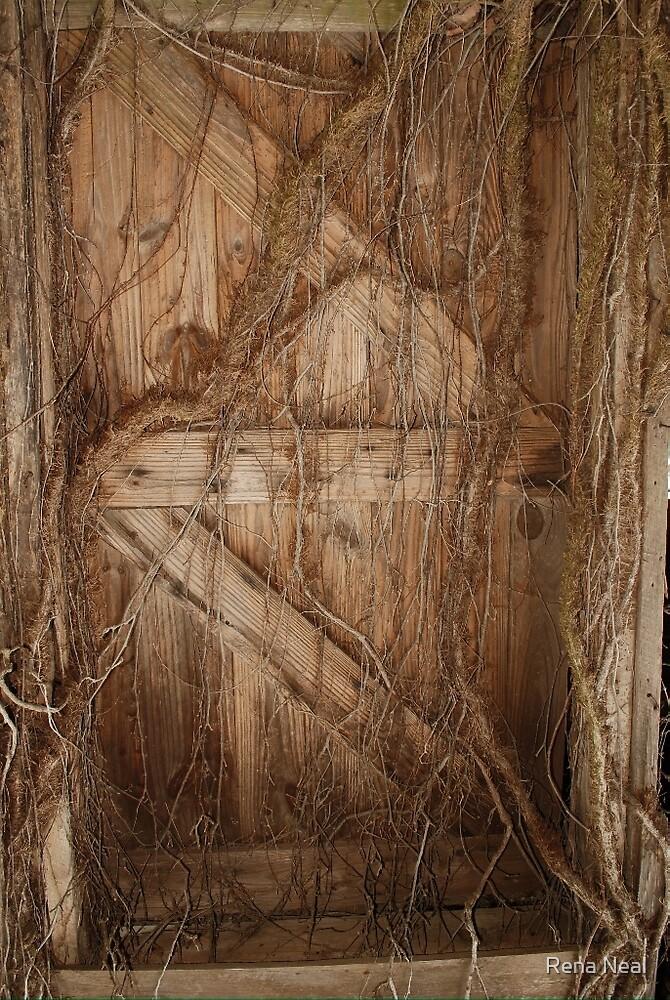 Wood Trolls Door by Rena Neal
