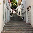 39 Steps by Robert Abraham