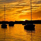 Yacht on Noosa River at sunset 4 by Jaxybelle
