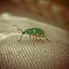 Wee Greeny Buggy Thing by Nechtan