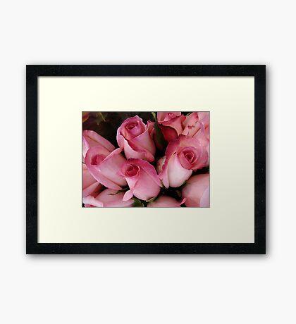 PRETTY PINK ROSEBUDS Framed Print