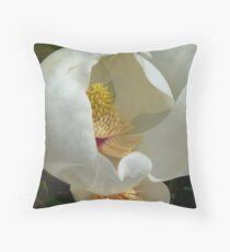 Magnolia grandiflora  Dekokissen