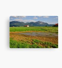 Wetlands. 01. Canvas Print