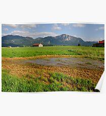 Wetlands. 01. Poster