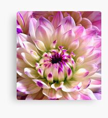 Love Spreading Canvas Print