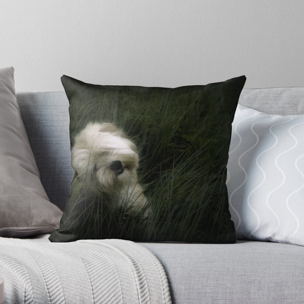 Happy Birthday Gizmo Throw Pillow