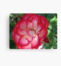 """World """"Cup Soccer"""" Rose Canvas Print"""