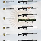 Weapons of the Argentine Rifle Squad (2019) by nothinguntried