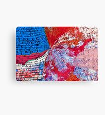 Hole in The Ozone Layer Canvas Print