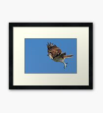 A Leap Above the Ocean Framed Print