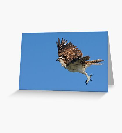 A Leap Above the Ocean Greeting Card