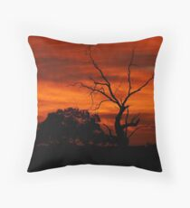 Red Dawn - Wogollow Farm, Benerembah Throw Pillow