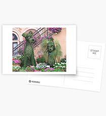 Topiary Lady and the Tramp Postcards