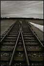 Auschwitz Birkenau - Railway (towards the 'Ramp') by Peter Harpley