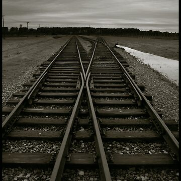 Auschwitz Birkenau - Railway (towards the 'Ramp') by PeterHarpley