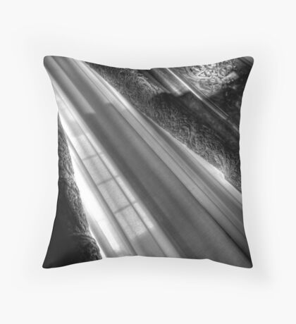 Palatial Patterns Throw Pillow