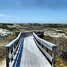 Boardwalk by Sharon A. Henson