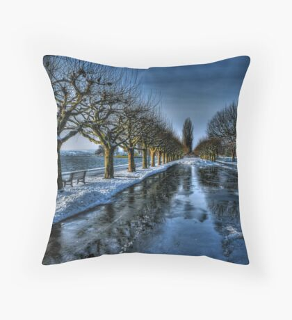 Trees of the Zugersee II Throw Pillow