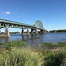 Tacony Palmyra Bridge on the Delaware River by EmilySutin
