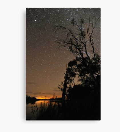 Starry Silhouette Canvas Print
