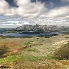 Lough Inagh Valley by John Quinn