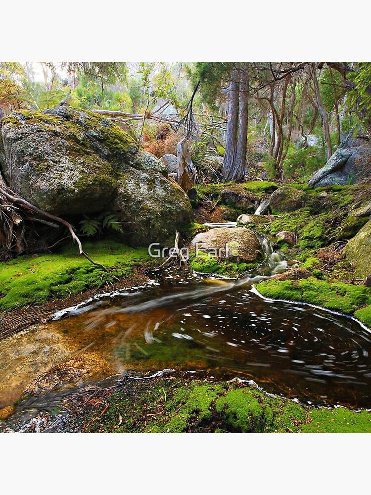 Rockpool  -  Flinders Island by GregEarl