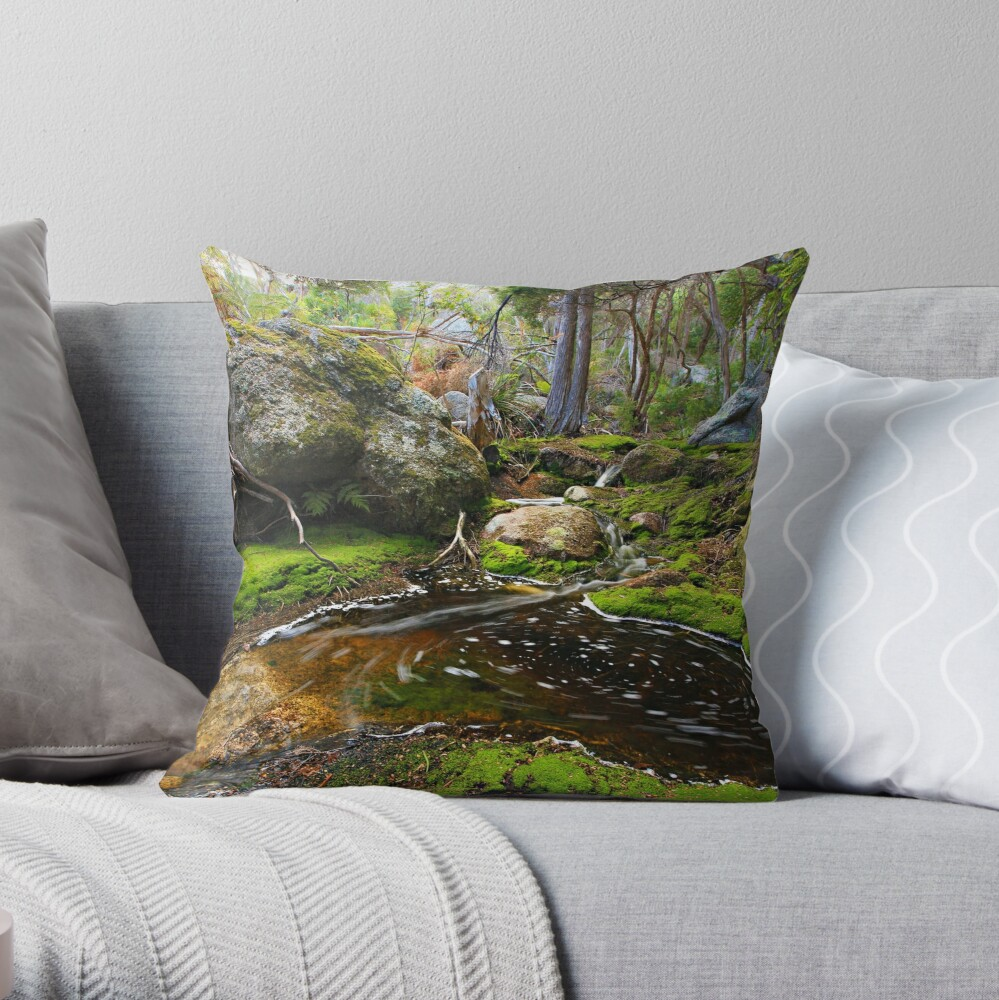 Rockpool  -  Flinders Island Throw Pillow