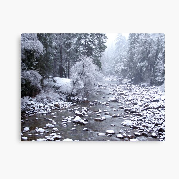 Winter in Yosemite Canvas Print